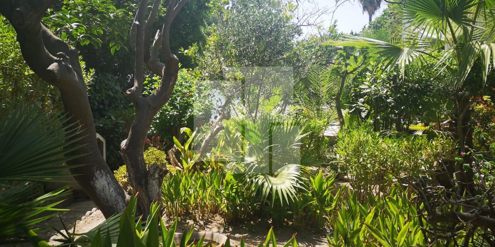 Villa avec un jardin arboré et une piscine, Carthage Byrsa